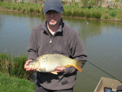 a beautiful 8lb common carp