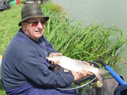 a barbel about 3lbs